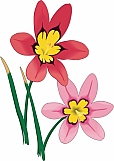 Wand Flowers 01