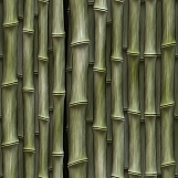 Bamboo 04