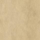 Parchment Paper 02