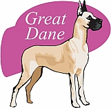 Great Dane 02