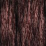 Tree Bark 02