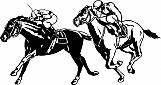 Horse Race 02