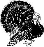 Turkey 02