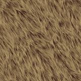 Bear Fur 01