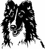 Shetland Sheepdog 01