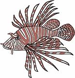 Lionfish 01