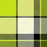 Plaid Fabric 06