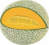 Cantaloupe 01