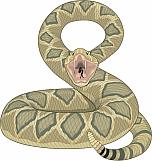 Snake 08