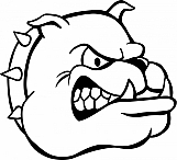 Bulldog 04