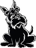 Scottish Terrier 04