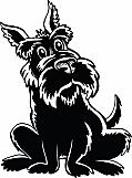 Scottish Terrier 04