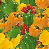Bell Peppers 01