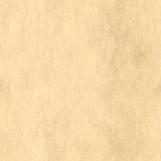 Parchment Paper 04