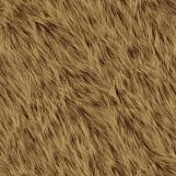 Bear Fur 02