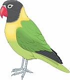 Love Bird 01