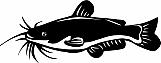 Catfish 01