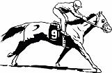 Race Horse 03