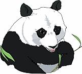 Panda Bear 02