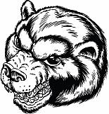 Bear 08