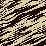 Tiger Hide 03