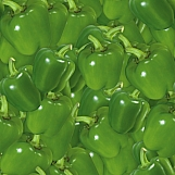 Bell Peppers 02