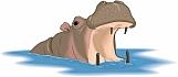 Hippopotamus 02