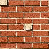 Brick Wall 31