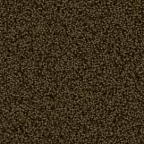 Carpet 04
