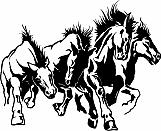 Horses Stampeding 01