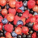 Berry Mix 01