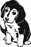 Beagle Pup 01