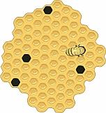 Honey Comb 01