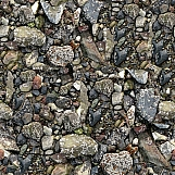 Rocks and Gravel 10
