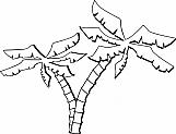 Palm Trees 01