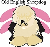 Old English Sheepdog 01