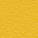 Citrus Skin 01