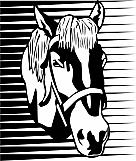 Horse 03