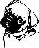 Pug 01