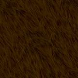 Bear Fur 05