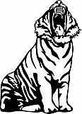 Tiger 06