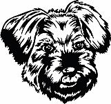 Little Dog Head 01