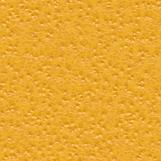 Citrus Skin 02