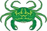 Crab 04