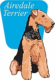 Airedale Terrier 02