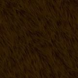 Bear Fur 06