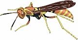Wasp 03