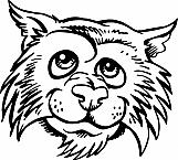 Wildcat 02