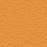 Citrus Skin 03